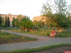 Люди устроили пикничок в парке