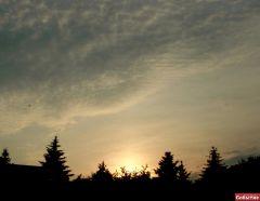 Небо над парком