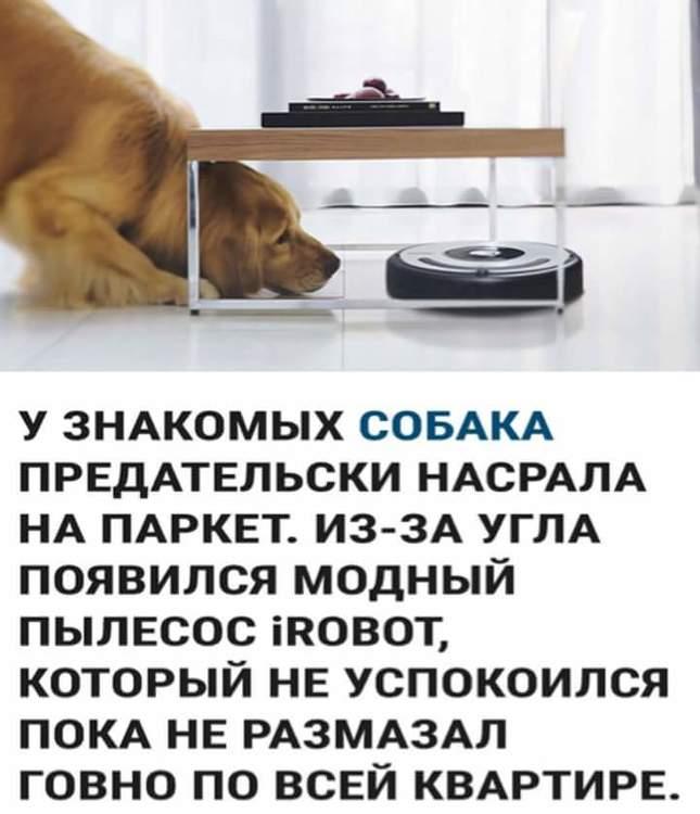 FB_IMG_1513788133052.jpg