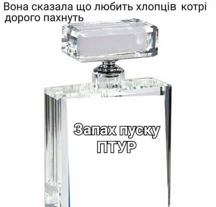 FB_IMG_1560751359981.jpg.53b5f2c916a7fbef6970bd2e9a861037.jpg