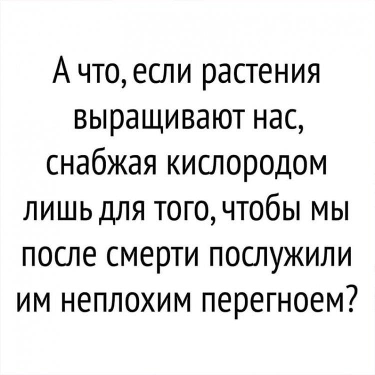 FB_IMG_15740754884192771.jpg