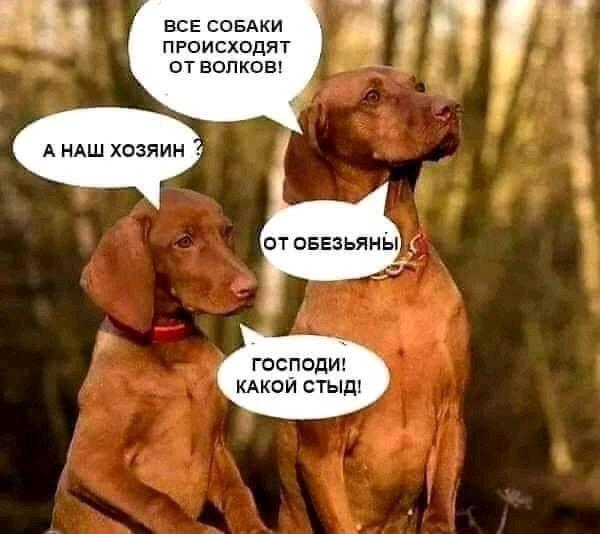 FB_IMG_15741169740663801.jpg