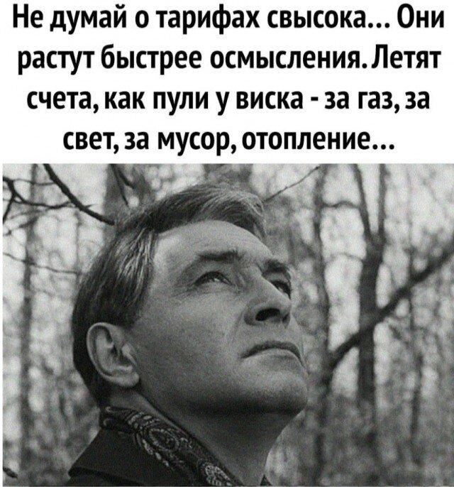политика-тирифы-ЖКХ-штирлиц-6341530.jpg